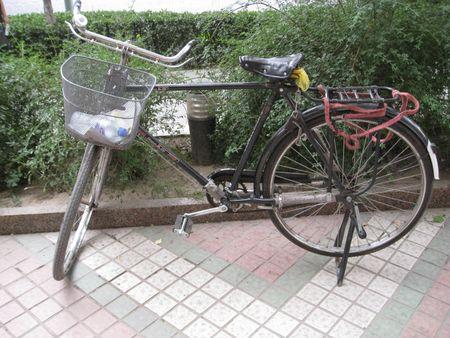 Hong Qi Bicycle 3